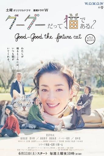 Gou Gou, the Cat