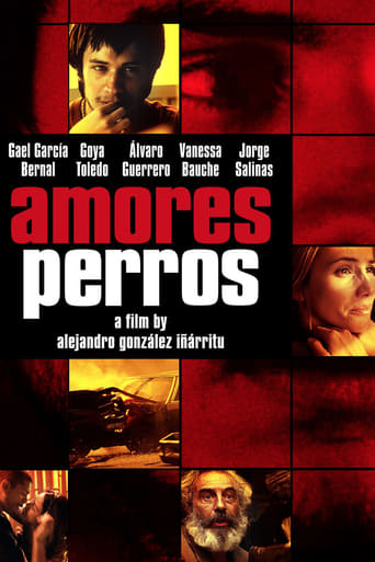 Image Amores Perros