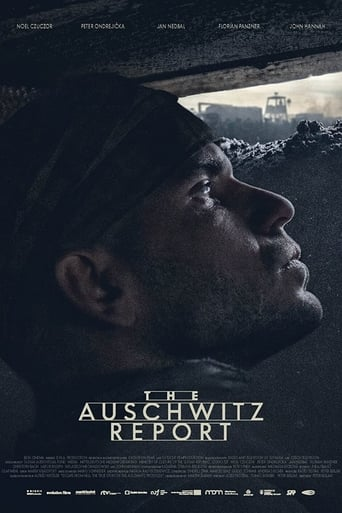 Poster of The Auschwitz Report