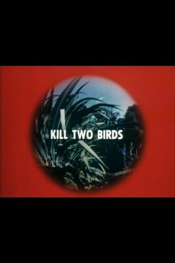 Poster of Kill Two Birds