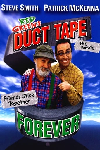 Poster of Duct Tape Forever