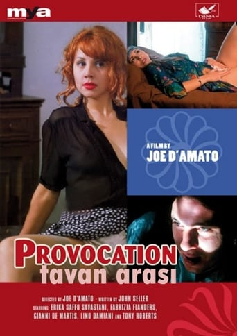 Poster of Provocation