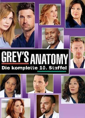 Staffel 10 (2013)