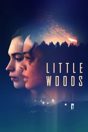 Poster of Little Woods