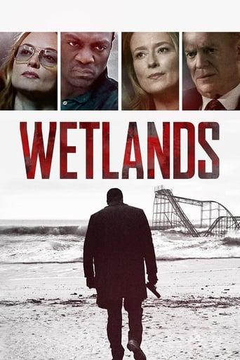 Poster of Wetlands