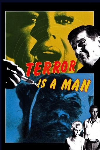 Poster of Terror Is a Man