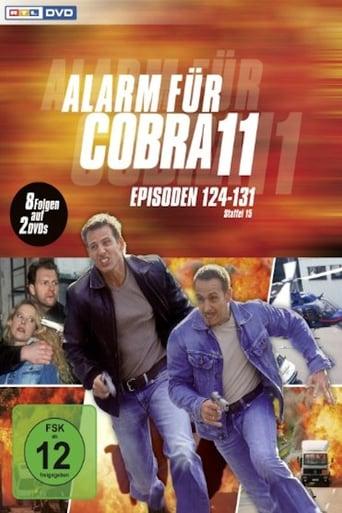 Staffel 17 (2005)