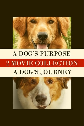 A Dog's Purpose Collection