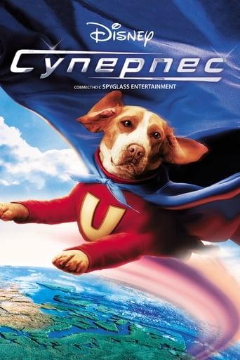 Poster of Суперпес
