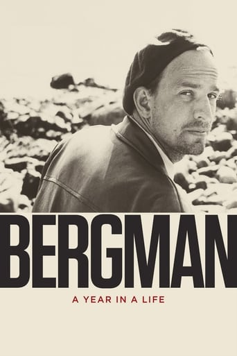 Poster of Bergman: A Year in a Life