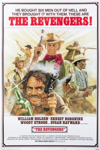Poster of The Revengers