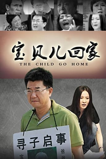 Poster of 宝贝儿回家