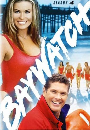 Saison 4 (1993)