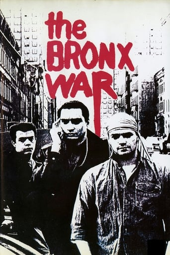 Poster of The Bronx War