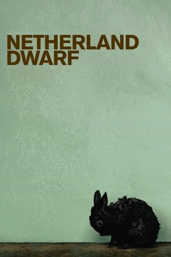 Poster of Netherland Dwarf