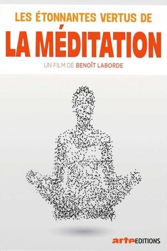 Poster of Les étonnantes vertus de la méditation