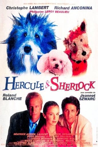 Poster of Hercule et Sherlock