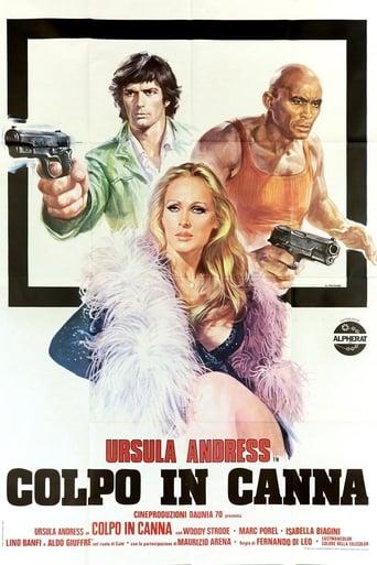 Poster of Loaded Guns