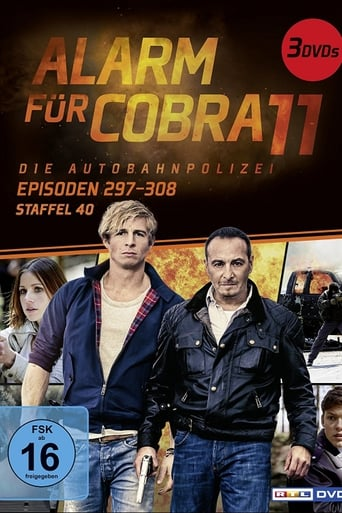 Staffel 40 (2017)