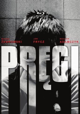 Poster of Pręgi