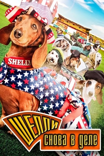 Poster of Wiener Dog Internationals