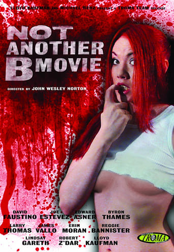 Poster of Not Another B Movie