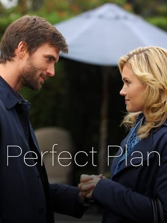 Poster of Perfect Plan