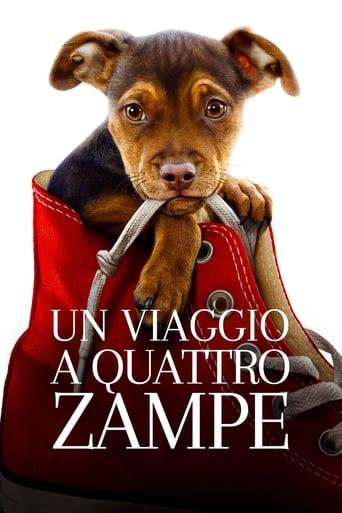 Poster of Un viaggio a quattro zampe
