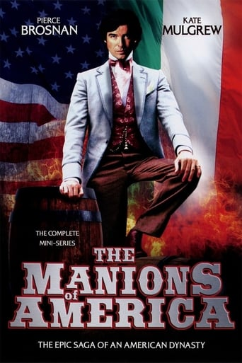 Poster of The Manions of America