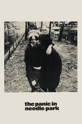 Poster of The Panic in Needle Park
