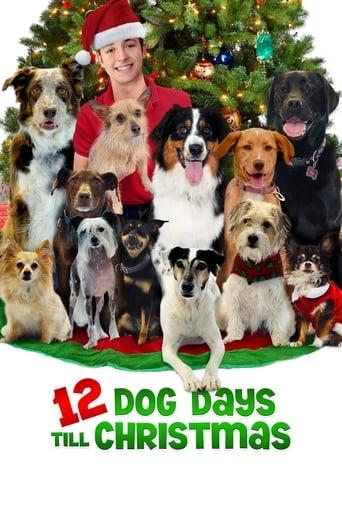 Poster of 12 Dog Days Till Christmas