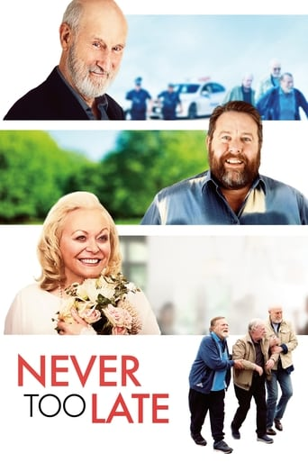 Poster of Never Too Late