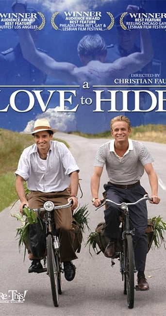 Poster of A Love to Hide