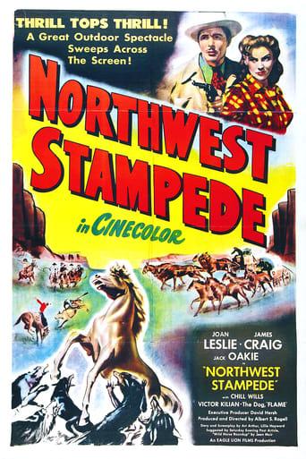 Poster of Northwest Stampede