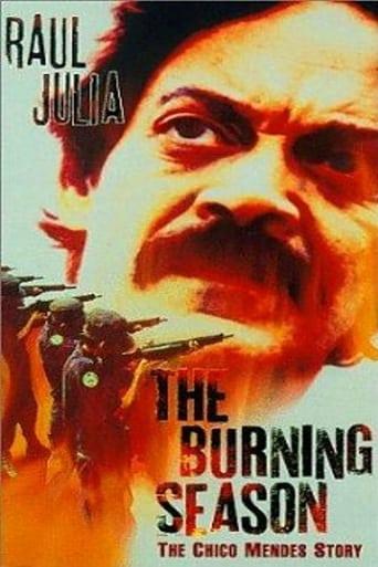 Poster of The Burning Season