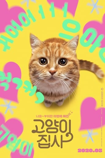 Poster of Our Cat