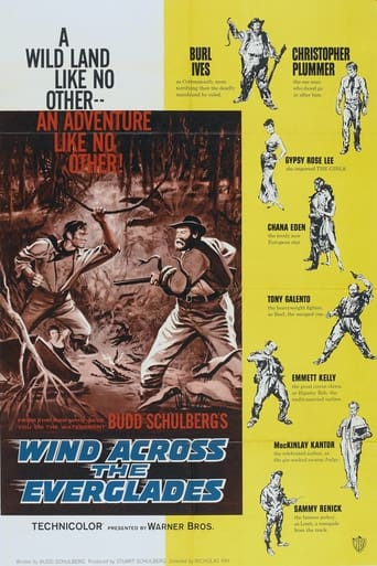 Wind Across the Everglades