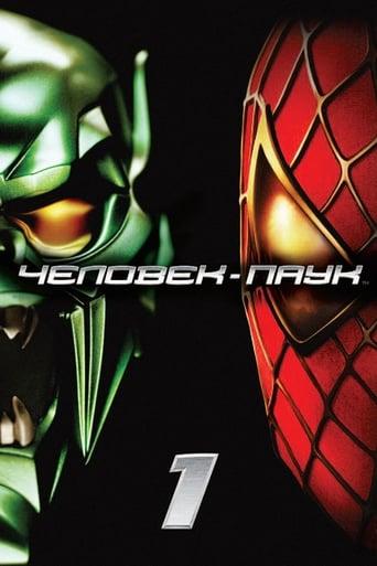 Poster of Человек-паук