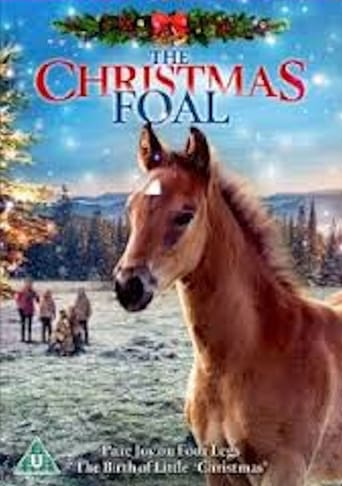 The Christmas Colt poster