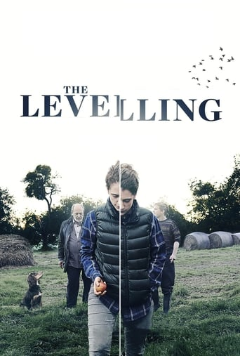 Poster of The Levelling