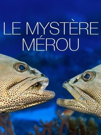 Poster of Le Mystère Mérou