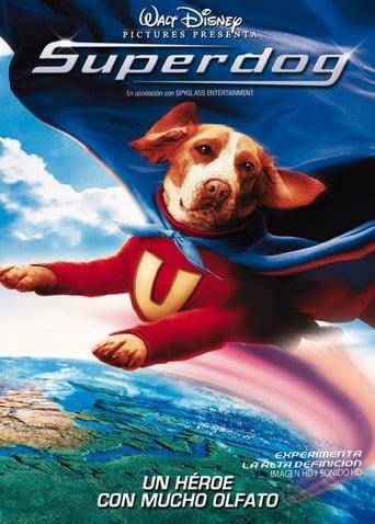 Poster of Superdog