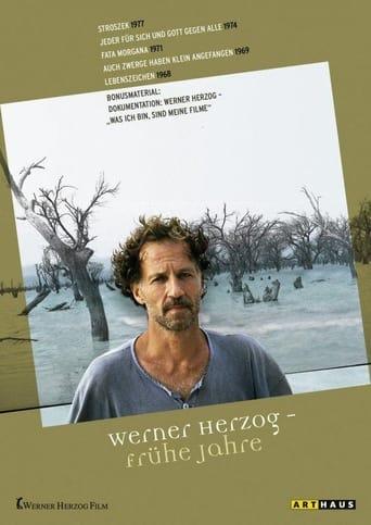Poster of Was ich bin sind meine Filme - Teil 2... nach 30 Jahren
