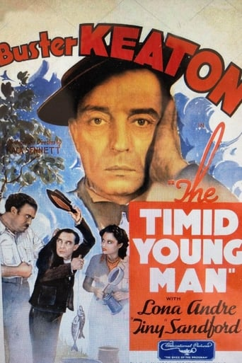Poster of The Timid Young Man