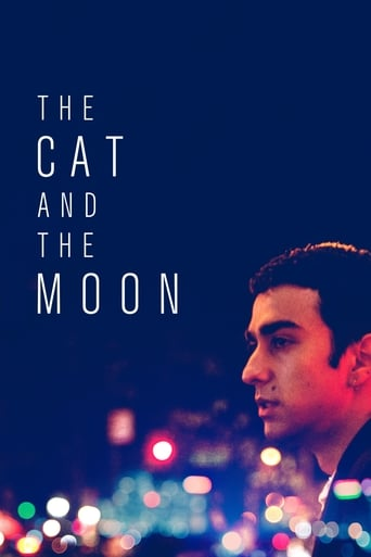 Poster of The Cat and the Moon