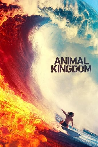 Poster of Animal Kingdom