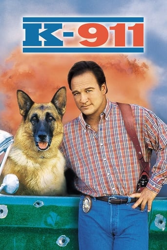 Poster of K-911