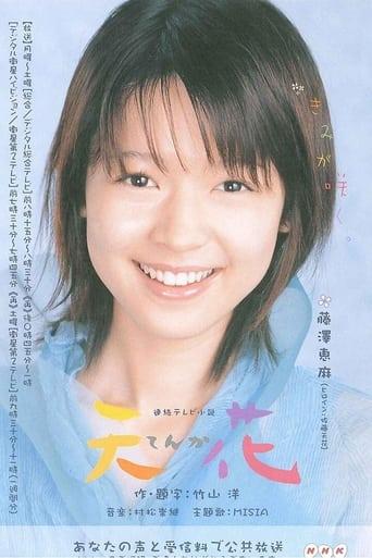 Poster of てんか