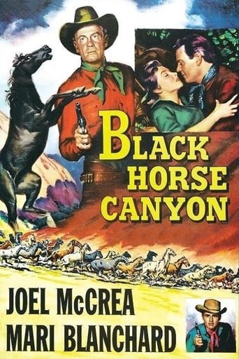 Poster of Black Horse Canyon