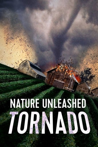 Poster of Nature Unleashed: Tornado